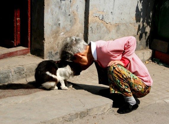 Photo of Woman and Cat in Love