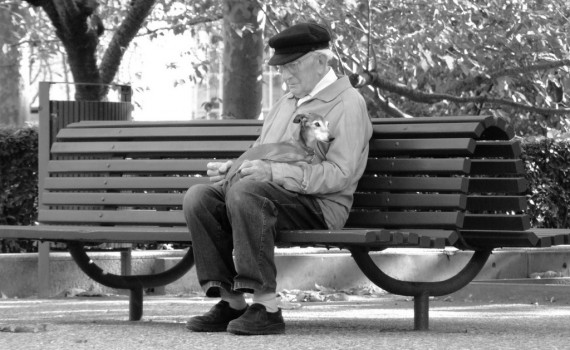 Photo of a Man Resting on a Bench
