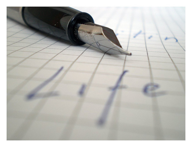 Essay my life