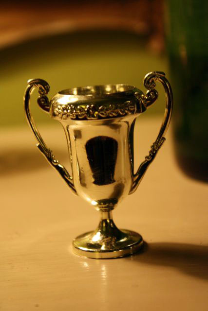 the trophy an essay about my dad fatherhood