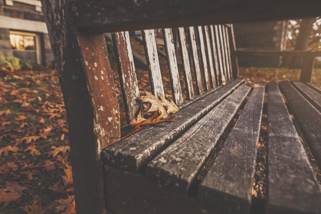 wood-bench-park-autumn